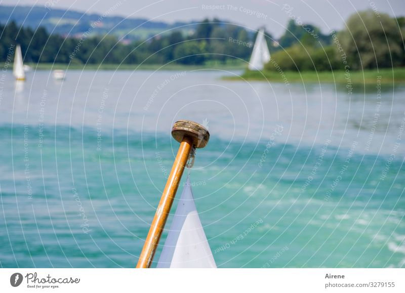 Sails set and weather is right Vacation & Travel Trip Lake Navigation Inland navigation Flag Water Blue White Day Sunlight White-blue Beautiful weather Sky