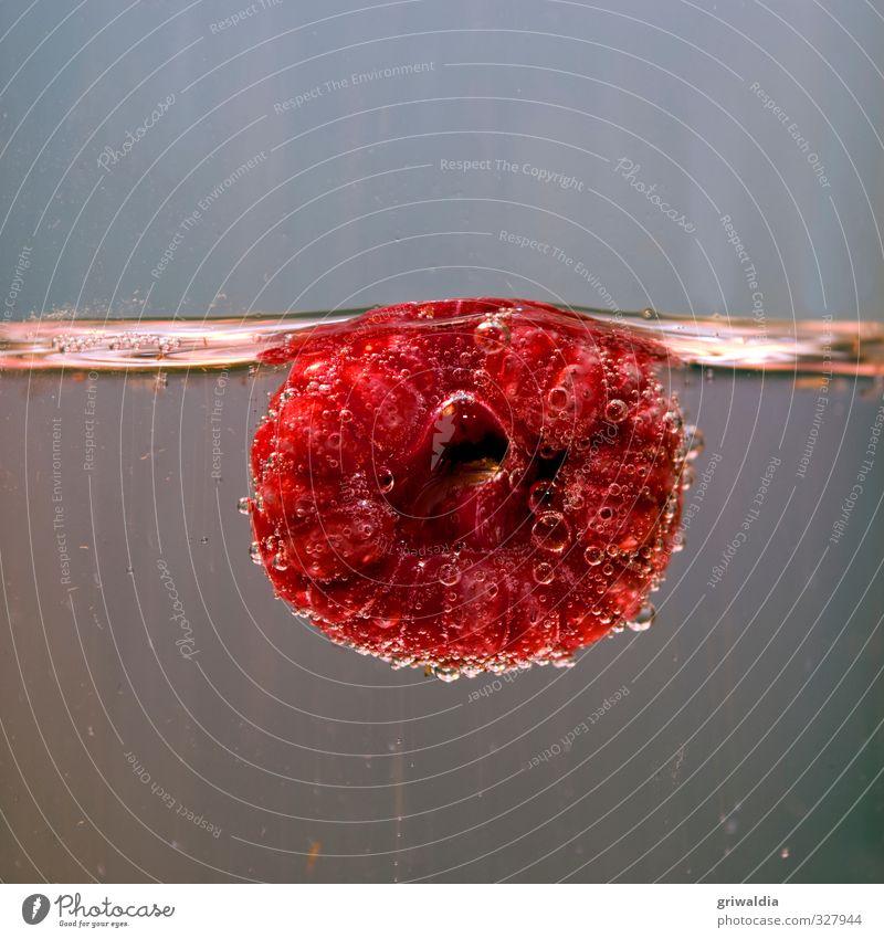 raspberry Food Fruit Glass Plant Berries Berry seed head Edible Summer Rose plants Red Sense of taste Water Fragrance Healthy Juicy Sweet Soft Blue Gray Pink