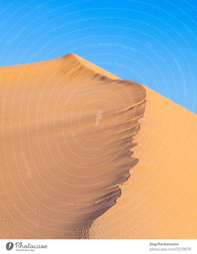 sand dune in sunrise in the desert Beautiful Vacation & Travel Adventure Sun Mountain Feet Nature Landscape Sand Sky Wind Warmth Hot Blue Yellow Colour Arizona