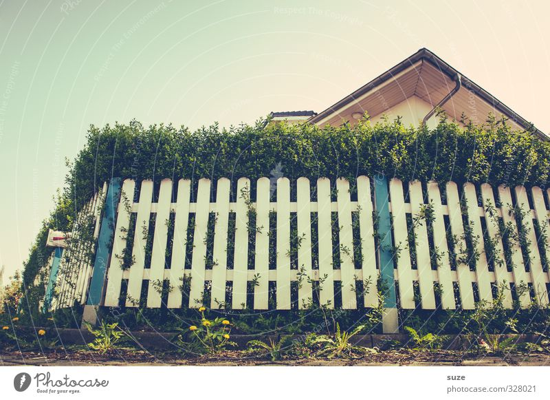 Crawling Perspective Lifestyle Leisure and hobbies Living or residing House (Residential Structure) Environment Sky Cloudless sky Summer Beautiful weather