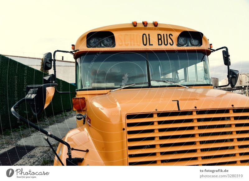 The ol' Bus was a School Bus Parenting Education way to school Youth culture Subculture USA Transport Means of transport Public transit Motoring Bus travel