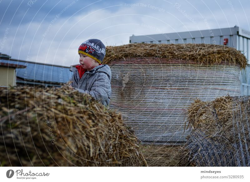 In straw Leisure and hobbies Playing Trip Farm Child Boy (child) 1 Human being 1 - 3 years Toddler Clouds Bad weather Straw Bale of straw Jacket Cap Movement