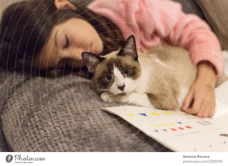 The girl and the cat Lifestyle Reading Sofa Child Woman Adults Book Pet Cat Stripe Sleep Fatigue Girl Asleep Bed Cuddle snuggle cat snuggles pet snuggles