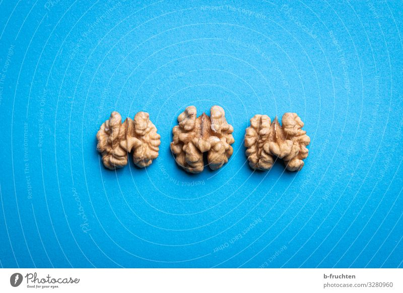 Brainfood Food Nutrition Organic produce Vegetarian diet Healthy Healthy Eating To enjoy Fresh Blue Walnut brainfood memorial food memory