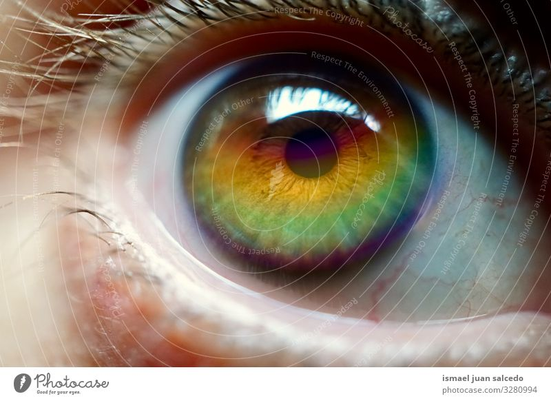 rainbow on the eye Face Eyes Pupil Man Human being Rainbow Symbols and metaphors Colour Multicoloured Rainbow flag Homosexual Pride diversity Tolerant Opening