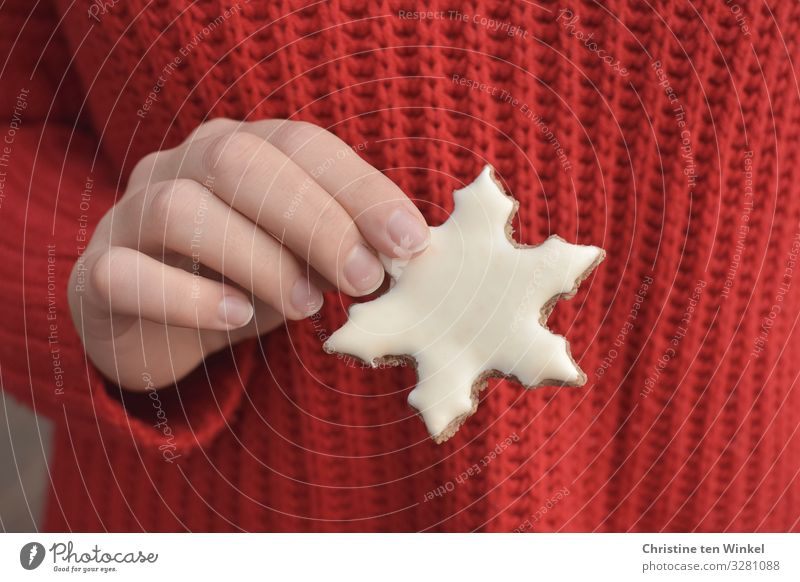 female hand holding a white cookie in the shape of snowflakes; red knitted sweater as background Food Dough Baked goods Candy Cookie Christmas biscuit Nutrition