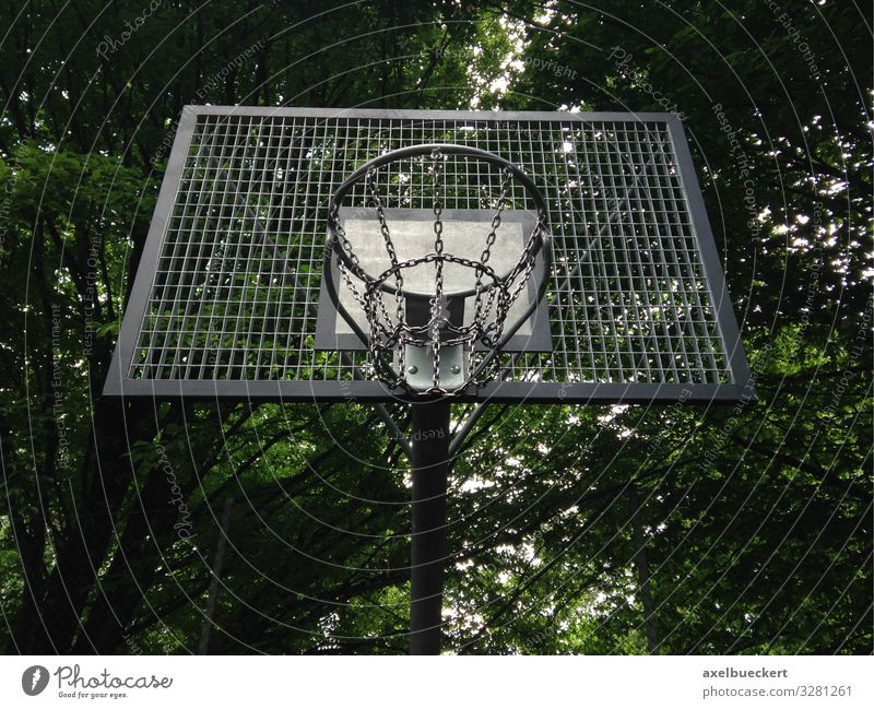 Streetball or Street Basketball Basket Lifestyle Leisure and hobbies Playing Sports Ball sports Sporting Complex Tree Park Basketball basket streetball