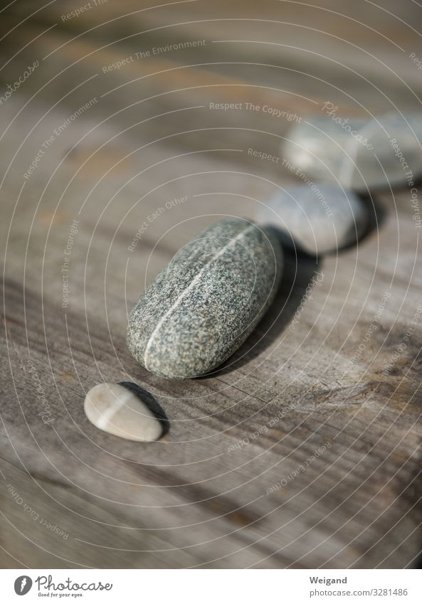 pebble Wellness Harmonious Environment Nature Stone Round Gray Passion Acceptance Trust Safety Attentive Pebble Meditation Spirituality Colour photo