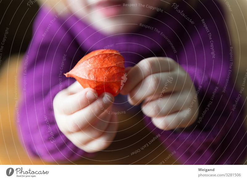 autumn bliss Wellness Harmonious Well-being Contentment Senses Relaxation Calm Meditation Parenting Kindergarten Child Girl 1 Human being Red