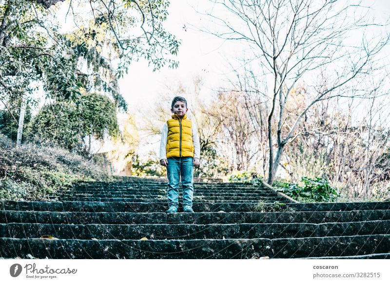 Lonely cute boy siiting on the stairs outdoors Child Human being Nature Town Beautiful Green Tree Loneliness Calm Joy Forest Winter Face Lifestyle Autumn Yellow