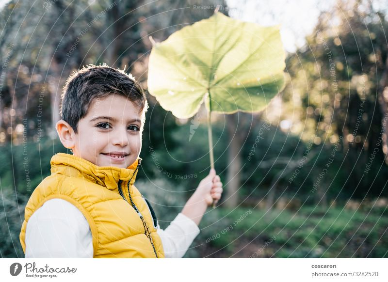 Cute child with yellow vest holding a big leaf Lifestyle Joy Happy Beautiful Leisure and hobbies Trip Garden Child Human being Masculine Toddler Boy (child)