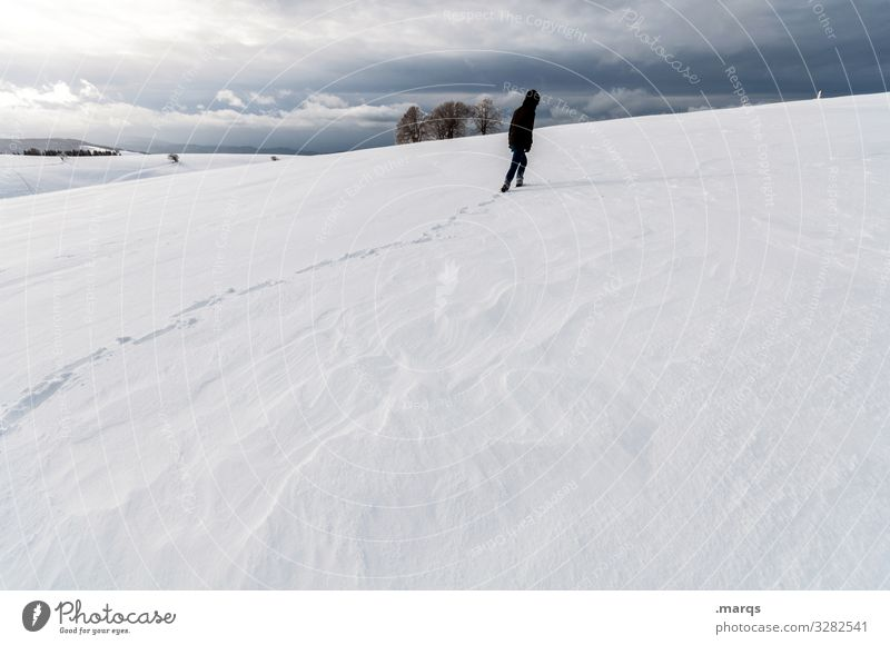 Human being Nature Landscape Winter Environment Cold Lanes & trails Snow Moody Ice Adventure Authentic Future Climate Frost Storm clouds