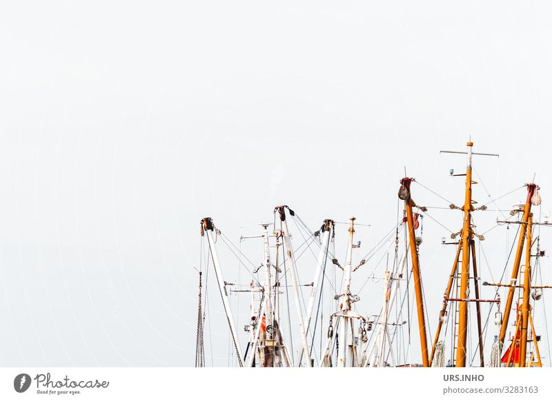 Ship masts in front of a bright background Sailing Sailboat Maritime Brown Gray White Vacation & Travel Pole Mast Tree Colour photo Exterior shot Deserted