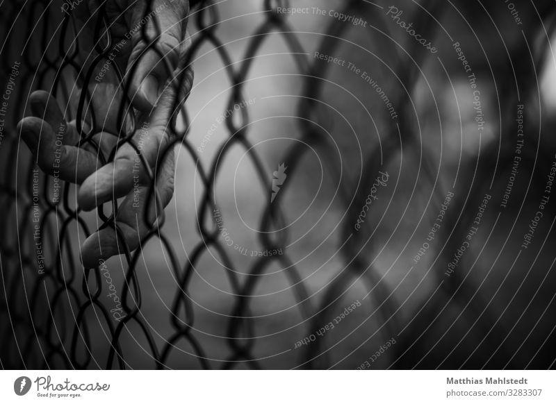 border Hand Fence Metal Touch Dark Black White Emotions Concern Longing Wanderlust Loneliness Claustrophobia Surveillance Bans Black & white photo Exterior shot