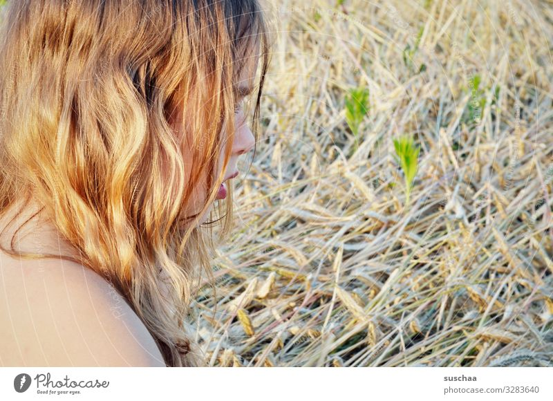 Summer in your hair Hair and hairstyles Blonde Undulating lured Summery Sunlight Warmth Profile Head Child Girl Shoulder Field Straw Grain field Exterior shot