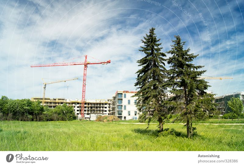 2 Observers Environment Nature Landscape Plant Sky Clouds Summer Weather Beautiful weather Tree Grass Bushes Meadow Vienna Town House (Residential Structure)