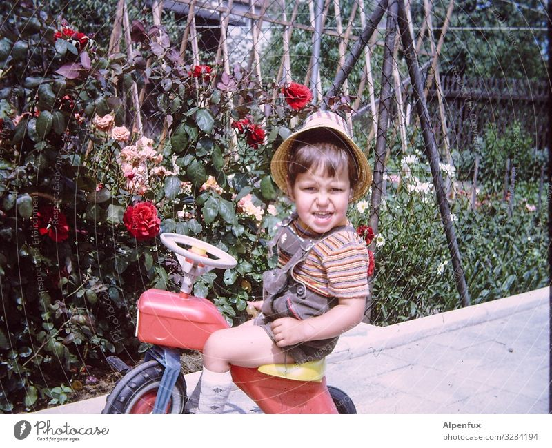 Guns N' Roses Human being Masculine Toddler Boy (child) 1 - 3 years Tricycle Observe Smiling Looking Playing Joy Happy Happiness Contentment Adventure Beginning
