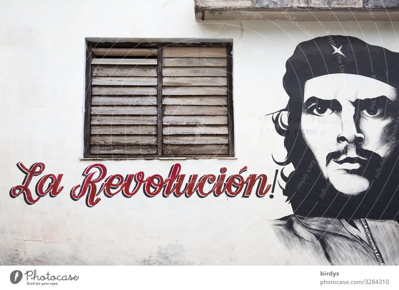 el Che Masculine Face 1 Human being Cuba Facade Window Sign Characters Graffiti Authentic Famousness Success Positive Gray Red Black White Bravery