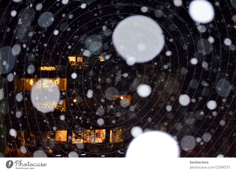 Bright lights and snowflakes Living or residing Feasts & Celebrations Christmas & Advent New Year's Eve Winter Snow Snowfall Village