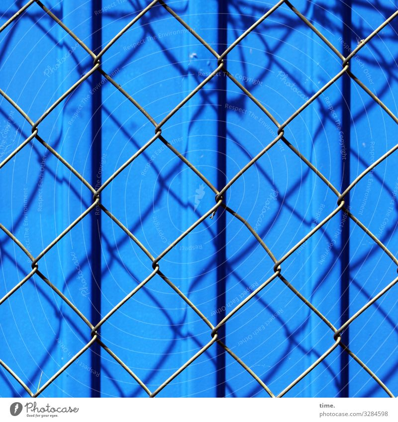 Stories from the fence (68) Construction site Beautiful weather Container Fence Grating Wire netting Wire netting fence Metal Steel Line Stripe Blue Moody