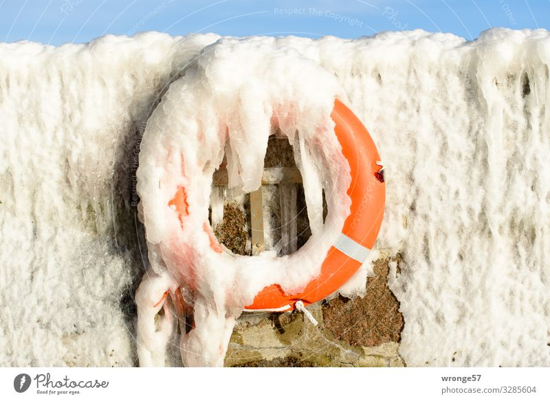 Winter at the sea I Harbour Hang Cold Maritime Blue Orange White Safety Rescue Ice Icicle Frozen Life belt Emergency Wall (barrier) Mole Colour photo