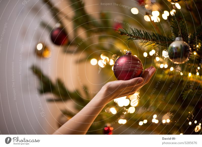 Hand holding a Christmas tree ball from the Christmas tree at Christmas time Glitter Ball ornament Decoration Christmas fairy lights Fairy lights Pensive Warmth