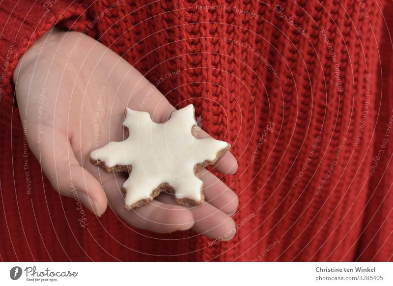 female hand holding a white Christmas cookie in snowflake form; red knitted sweater as background Food Dough Baked goods Candy Cookie Christmas biscuit