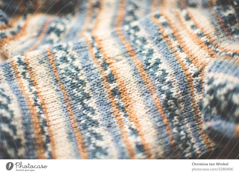 Knitted socks in close-up Stockings Wool socks Stripe Esthetic Authentic Exceptional Happiness Bright Hip & trendy Uniqueness Cuddly Near Natural Beautiful