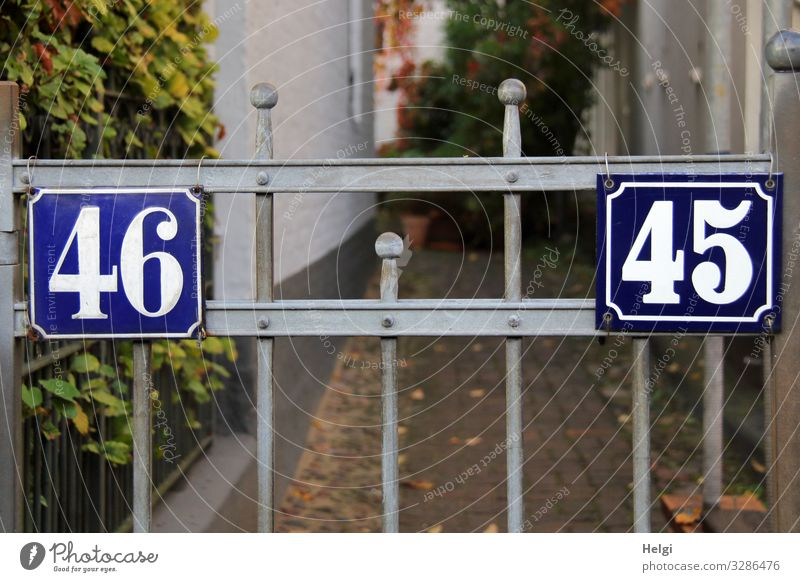 Gate with house numbers 45 and 46 Plant Leaf Hamburg Town Port City House (Residential Structure) Wall (barrier) Wall (building) Goal House number