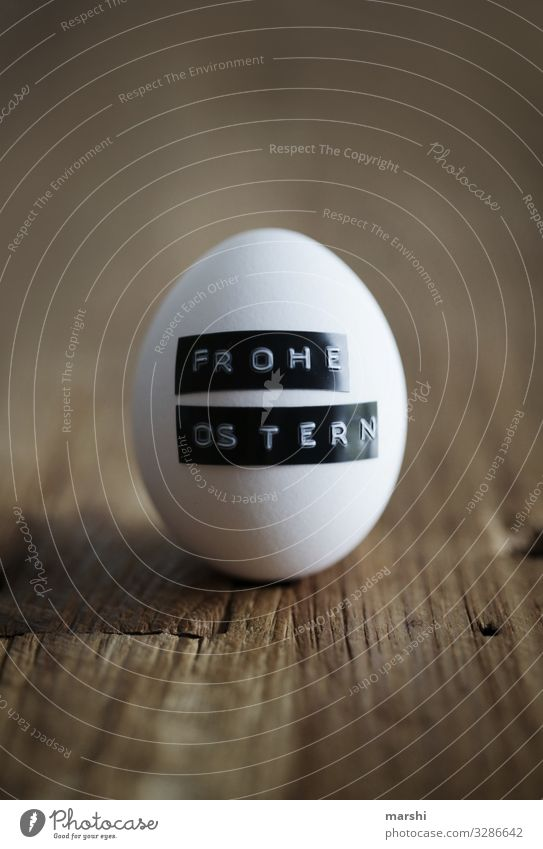 Easter egg Food Sign Emotions Moody Easter egg nest Congratulations Surprise Hover Blur White Wooden table Colour photo Interior shot Close-up Detail