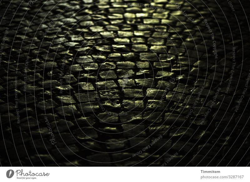 Evening light on cobblestones Paving stone Light conceit golden Close-up Stone Deserted Street Cobblestones Shadow