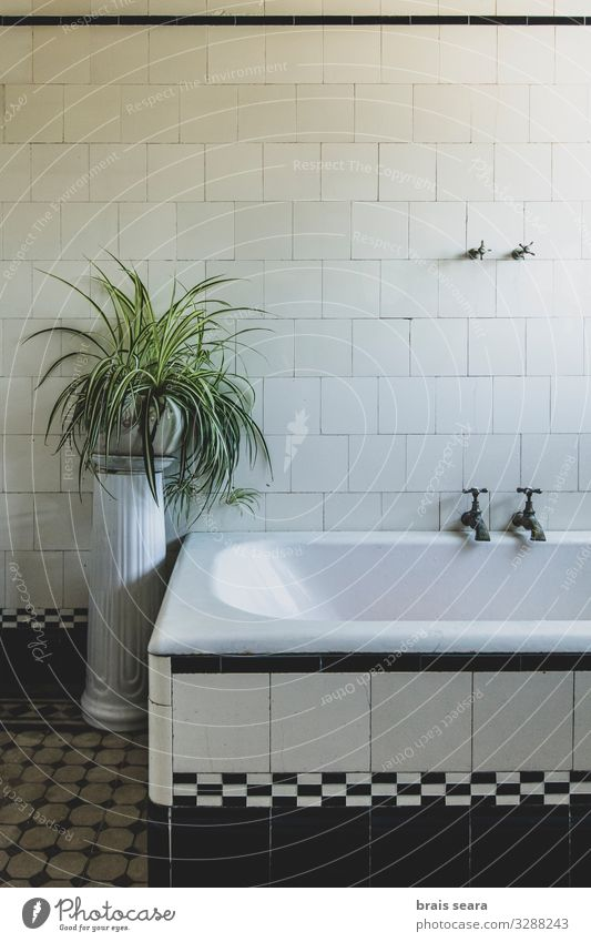 Bathroom Lifestyle Design Health care Senses Relaxation Spa Massage Living or residing House (Residential Structure) Dream house Interior design Decoration