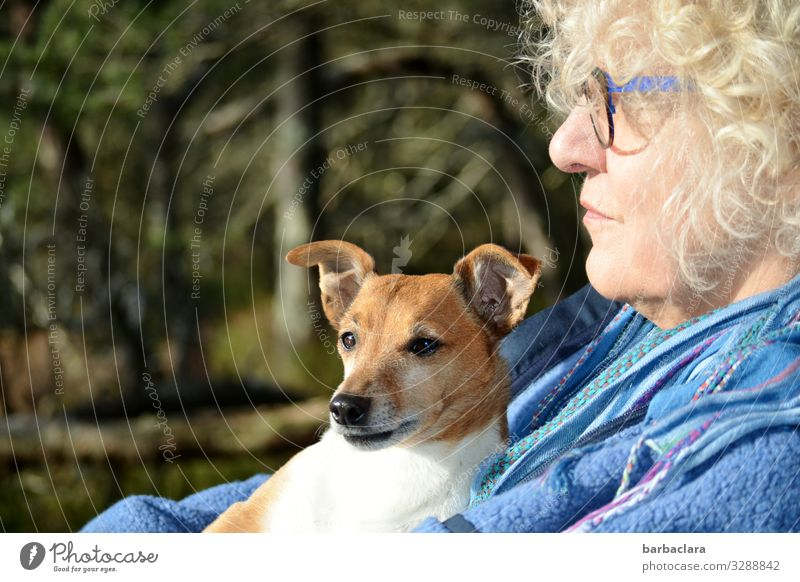 farsighted | view of the lake Woman Adults 1 Human being 60 years and older Senior citizen Nature Landscape Tree Bushes Fen Eyeglasses Blonde Curl Dog Animal