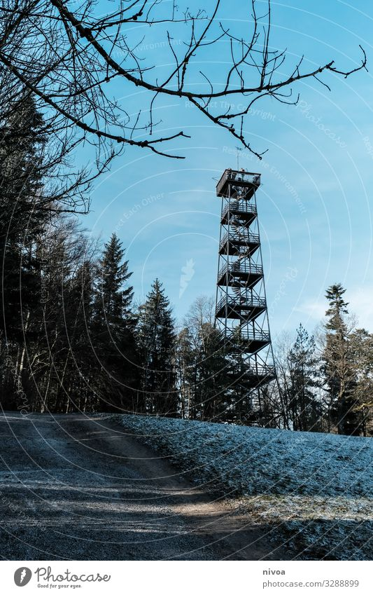 lookout tower Lookout tower Tower panhandle Switzerland Forest Architecture Metal Stairs Vantage point Mountain Alps forest path Clouds Blue Landscape Nature