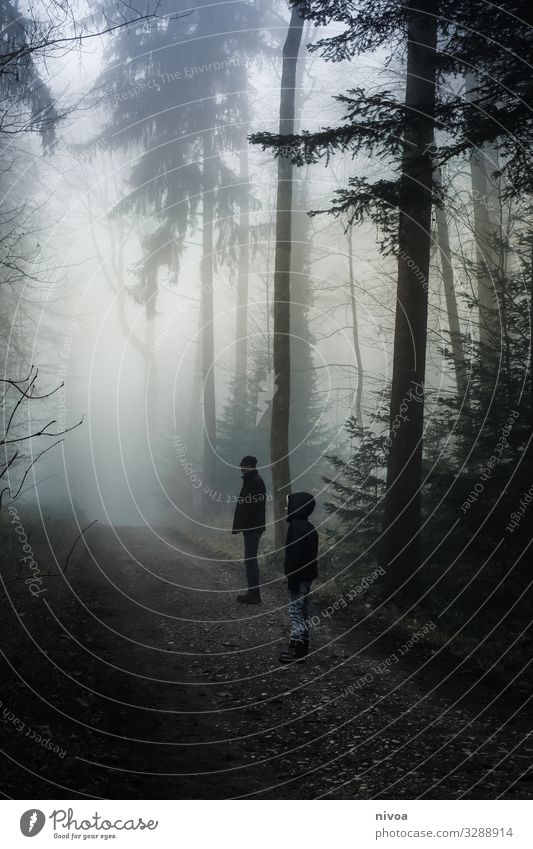 Father and son in the misty forest Trip Adventure Winter Human being Masculine Child Boy (child) Adults Infancy Life 2 Environment Nature Weather Fog Tree
