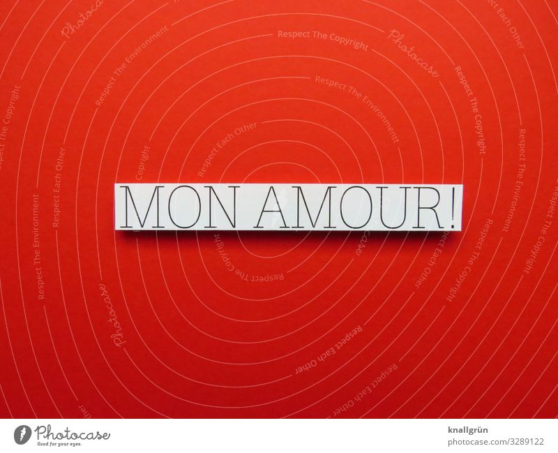 Mon Amour! French Love Declaration of love Heart Romance Infatuation Emotions Display of affection With love Valentine's Day Moody Happy heartfelt Trust