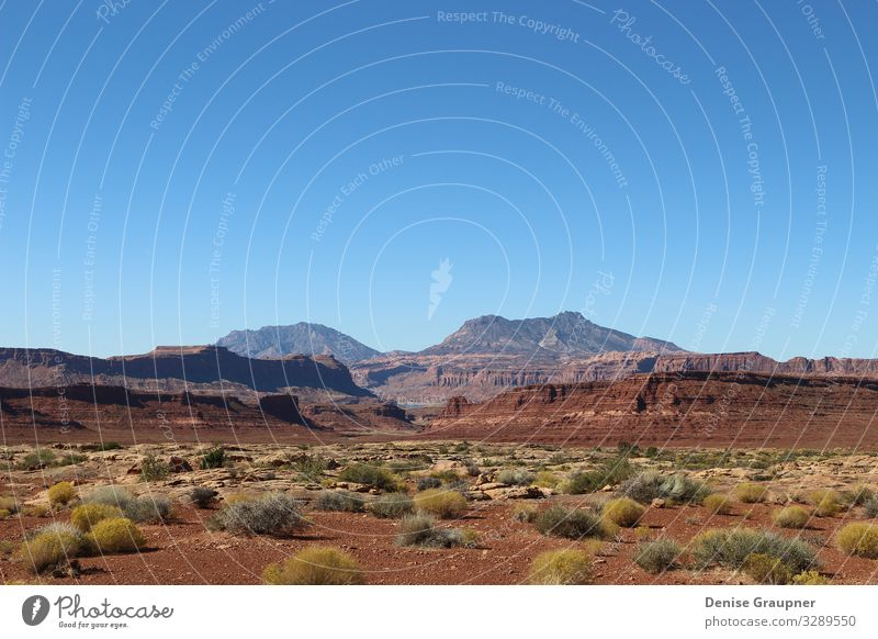 Landscape in Utah USA near Monument Valley Vacation & Travel Summer Environment Nature Sand Sun Climate Climate change Weather Beautiful weather Park Canyon