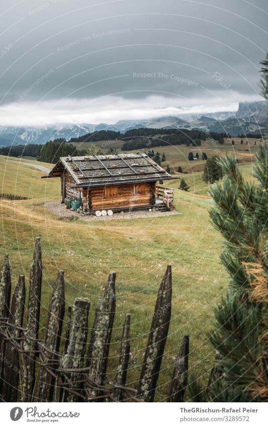 Alpe di Suisi - Alpe di Siusi Nature Landscape Old Fence Hut Alpine pasture Alps Seiser Alm Mountain Clouds Fog Tree Idyll Calm Meadow Wood Chalet vacation