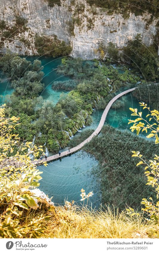 Plitvice Lakes Nature Blue Green Turquoise Tree Footbridge Water National Park Rock Bushes Croatia Vacation & Travel Travel photography Colour photo