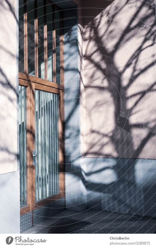Shadow from a tree on the house wall Architecture Town built Apartment Building Wall (barrier) Wall (building) Facade door Stone Glass Living or residing