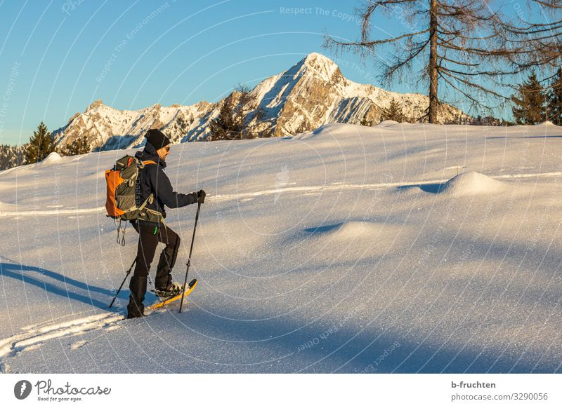 snowshoe hike Healthy Life Leisure and hobbies Vacation & Travel Tourism Winter Snow Winter vacation Mountain Hiking Sports Man Adults 1 Human being