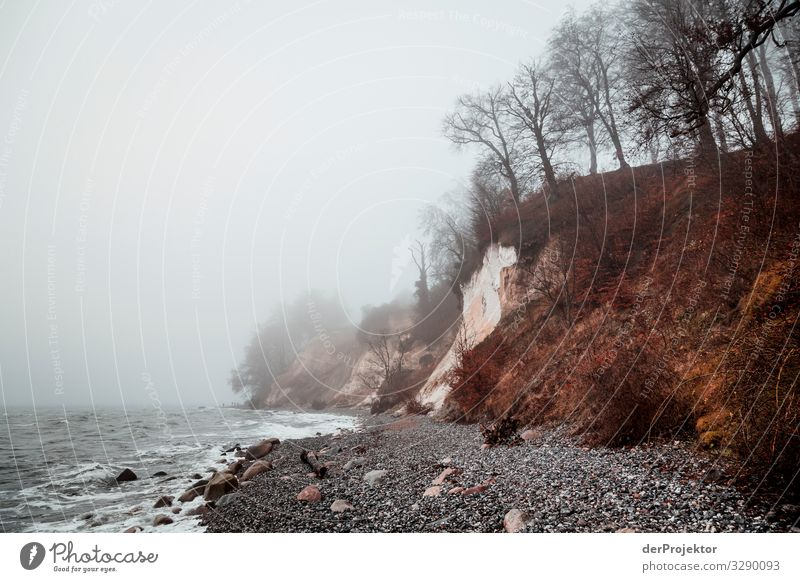 Chalk cliffs in winter on Rügen Panorama (View) Central perspective Shallow depth of field Contrast Copy Space middle Day Light Shadow Copy Space bottom