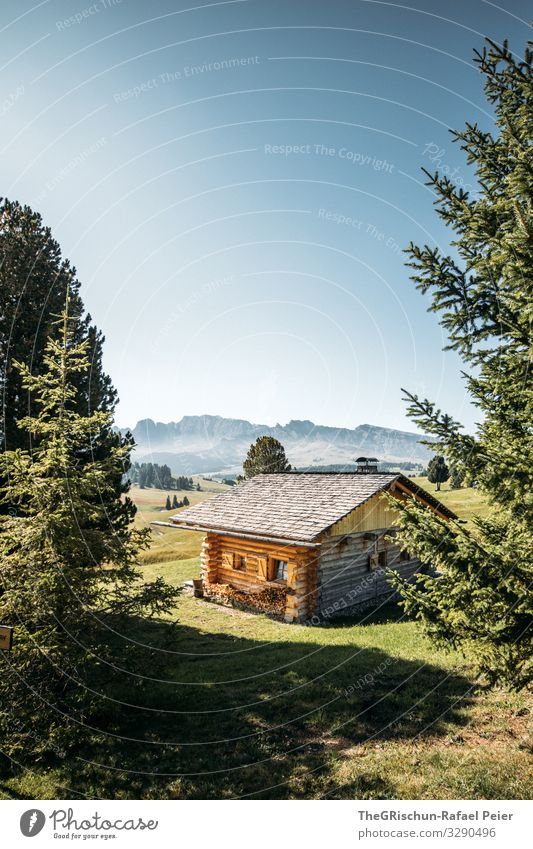 Nature Blue Green Landscape Tree Loneliness Calm Mountain Black Wood Brown Gray Italy Alps Hut Private