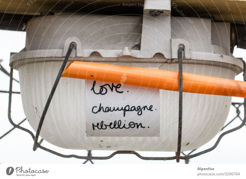 Graffiti Love Lamp Illuminate Characters Energy industry Sign Cable Piece of paper Rebellious Champagne Revolt
