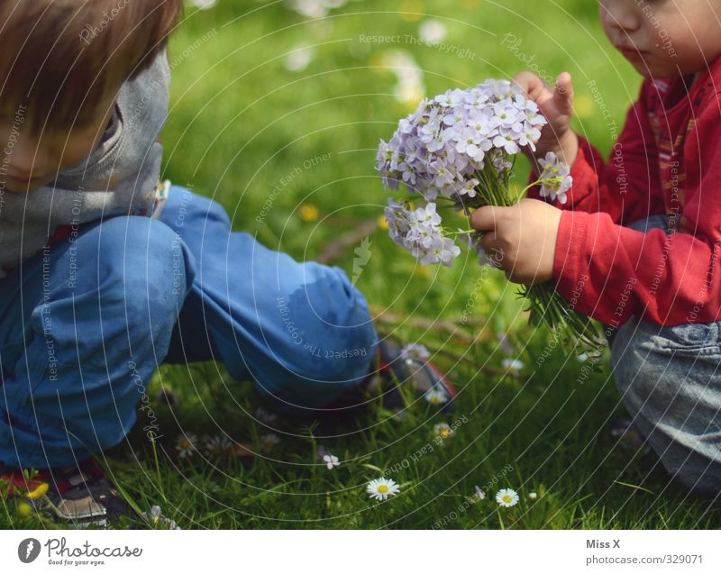 Human being Child Flower Love Meadow Emotions Spring Blossom Friendship Moody Family & Relations Together Infancy Happiness Cute Gift