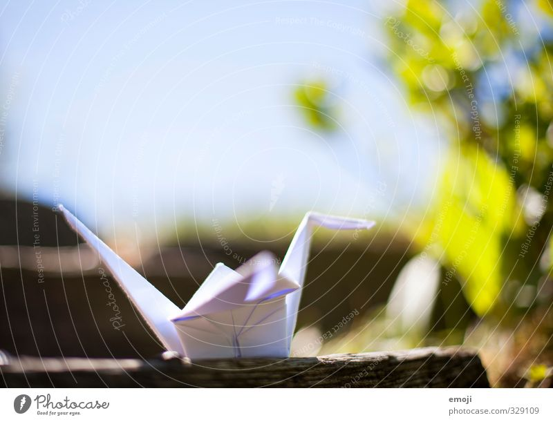 Nature Plant Animal Environment Spring Natural Crane Origami