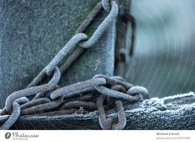 Frosty Chain Cold Inhibition Captured Chained up Colour photo Exterior shot Close-up Deserted Copy Space right Shallow depth of field