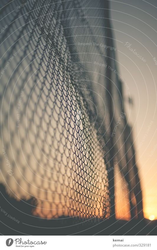 End of a summer day Sunrise Sunset Warmth Fence Wire netting fence Metal Moody Warm-heartedness Colour photo Subdued colour Exterior shot Deserted Evening