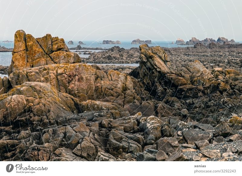 Coast in Plougrescant, Brittany Kericu France Maritime Adventure Environment Vacation & Travel Rock formation Low tide Copy Space top Deep depth of field