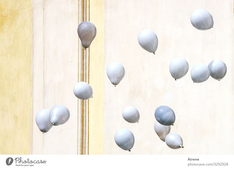 Carnival in Fürnehm Event Feasts & Celebrations Wedding Balloon Flying White Noble Elegant Decent Moderate Refrain Timidity Bright yellow Modest Happiness